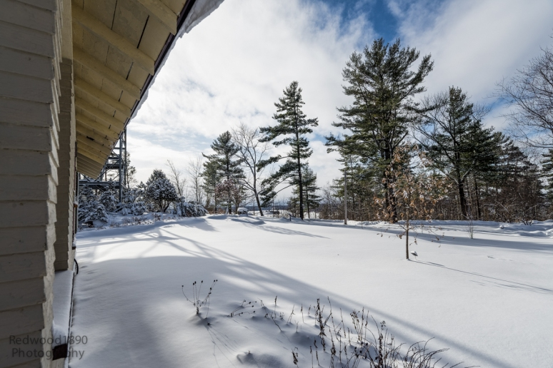 Redwood1890-20150105-_DSC5413_DxO-Edit